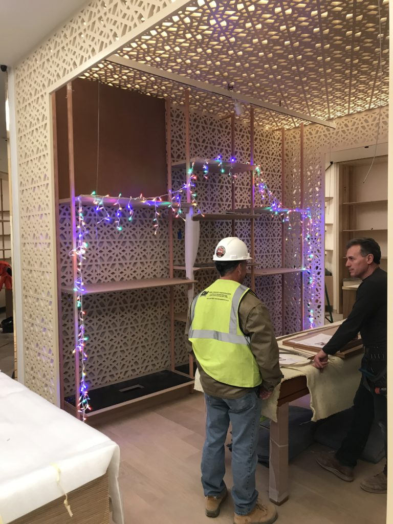 Install Photo with Christmas lights